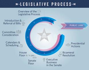 legislative-process-poster